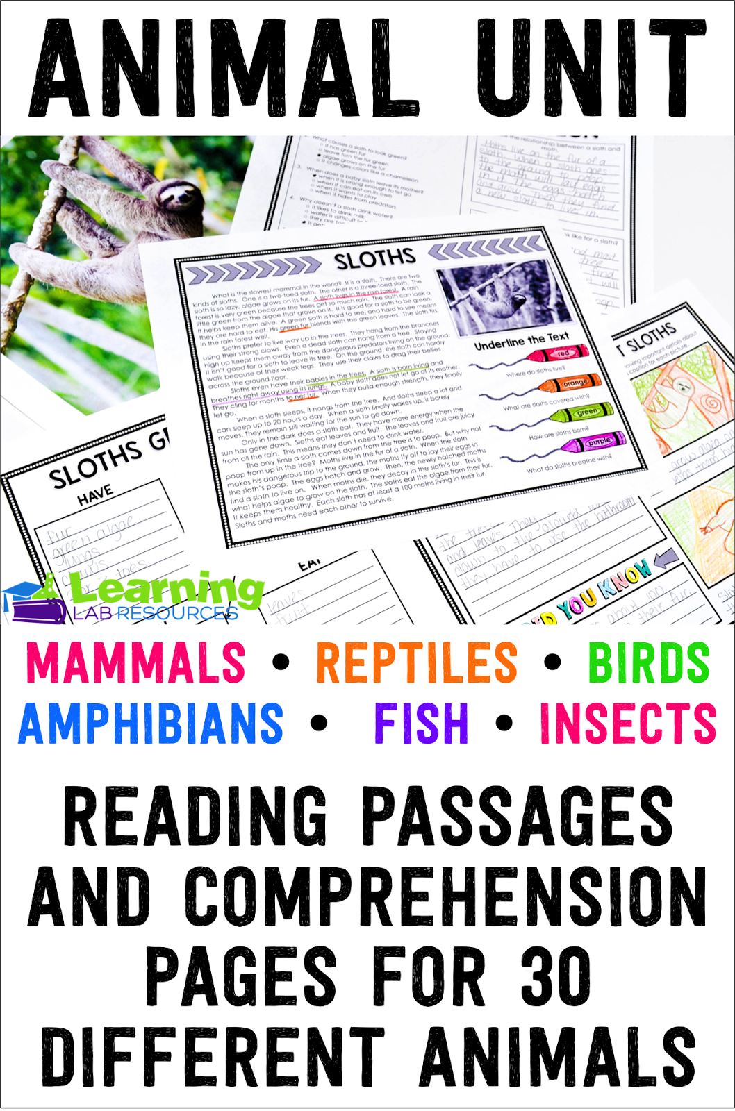 Animal Reading Passages And Comprehension Activities