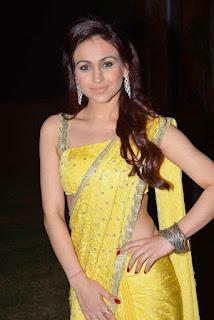 embellishing saree