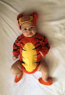disfraz de tiger