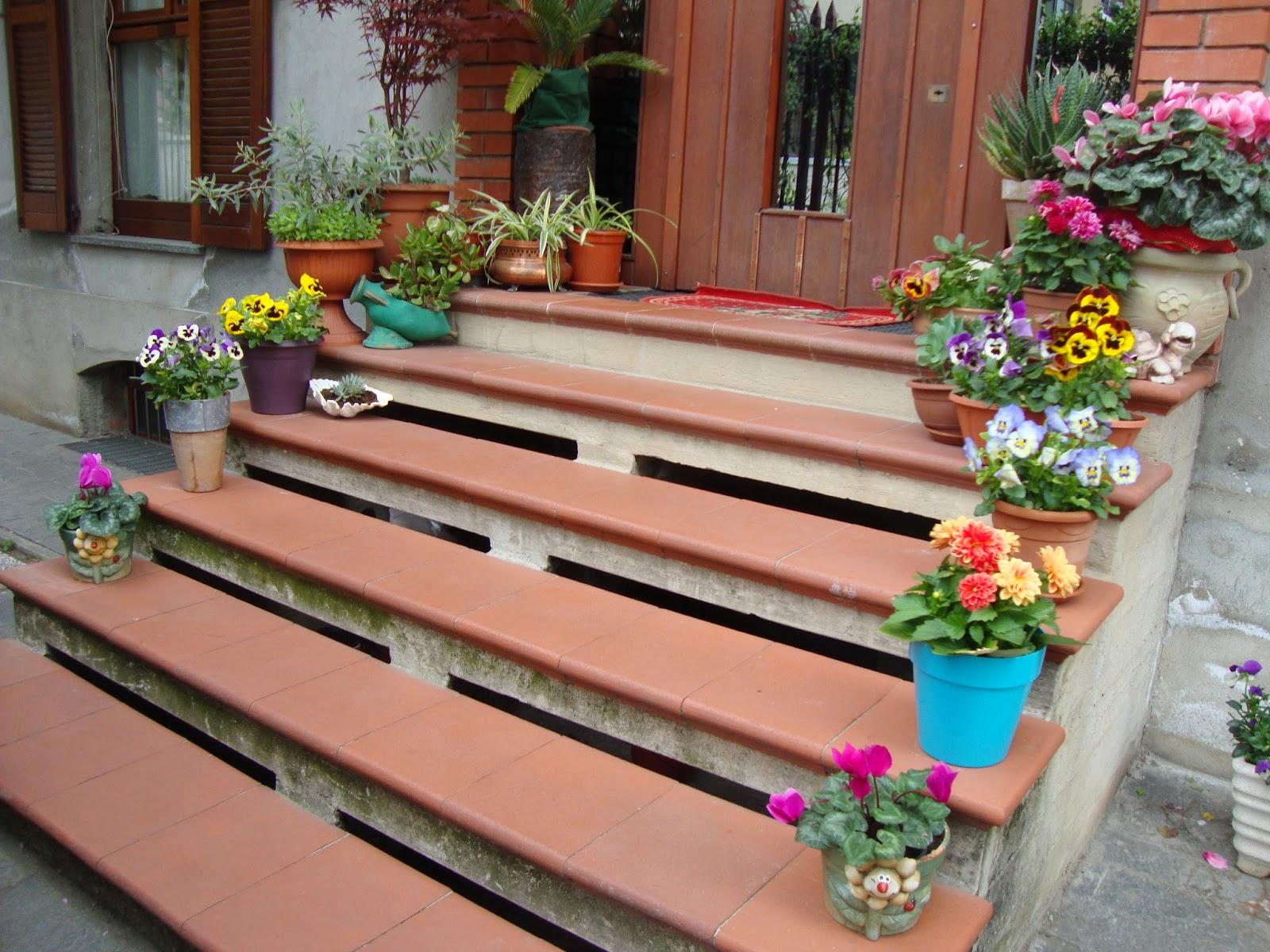 Un piccolo giardino in citt fiori e piante sulle scale for Piante per ingresso esterno