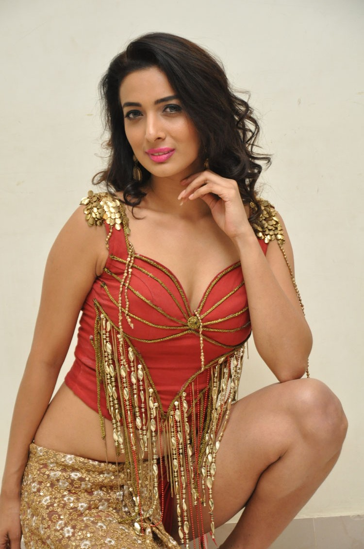 Heena Panchal New sizzling photo gallery-HQ-Photo-38