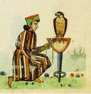 Federigo il suo falcone riassunto yahoo dating 7