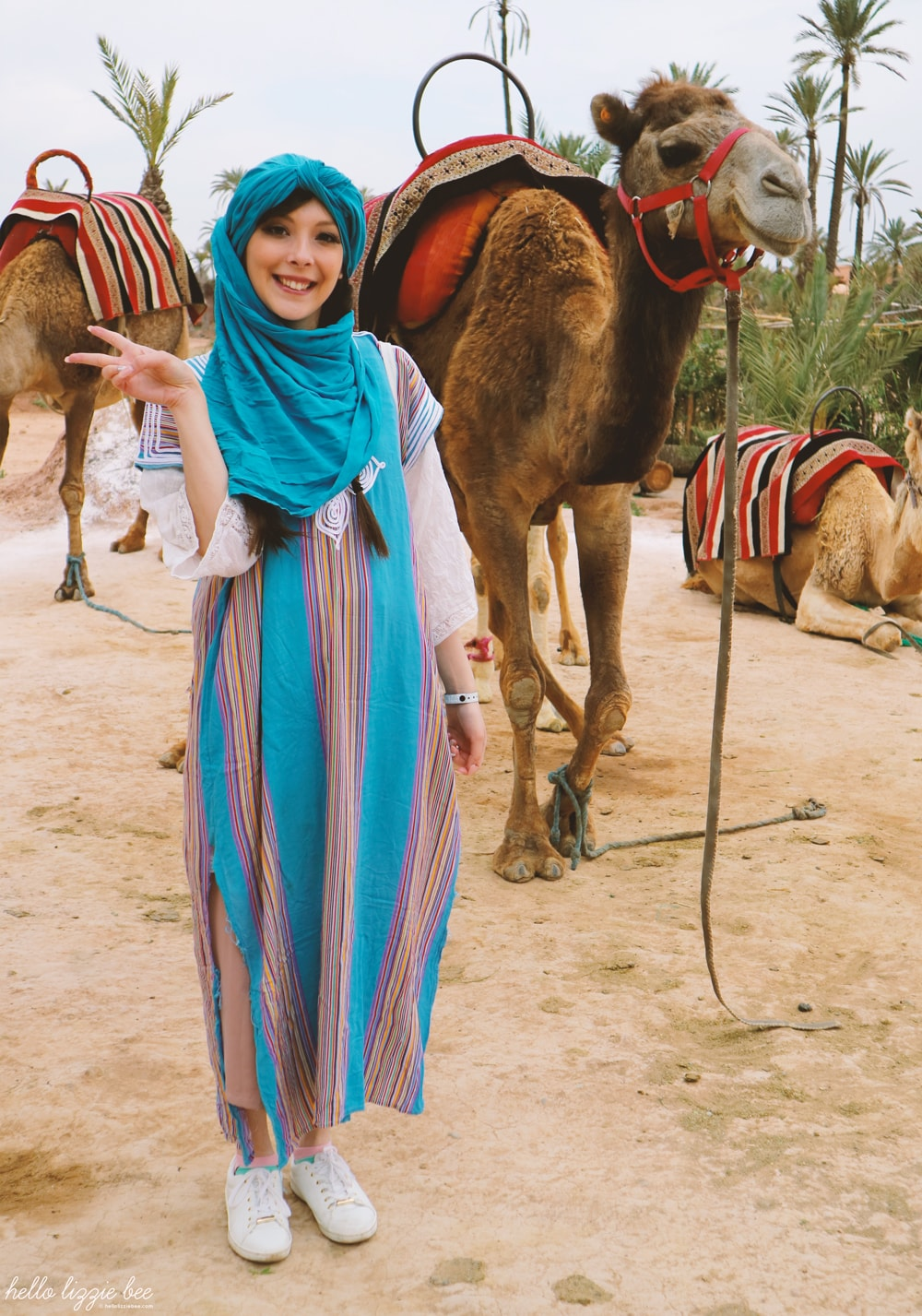 camel riding, camel safari, marrakesh, marrakech