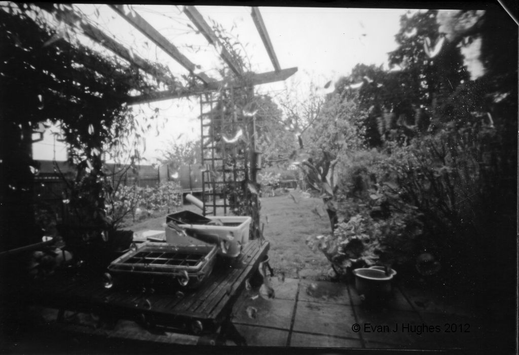 Rainy World Pinhole Photography Day