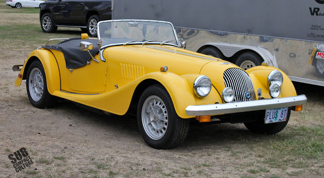 Yellow Morgan
