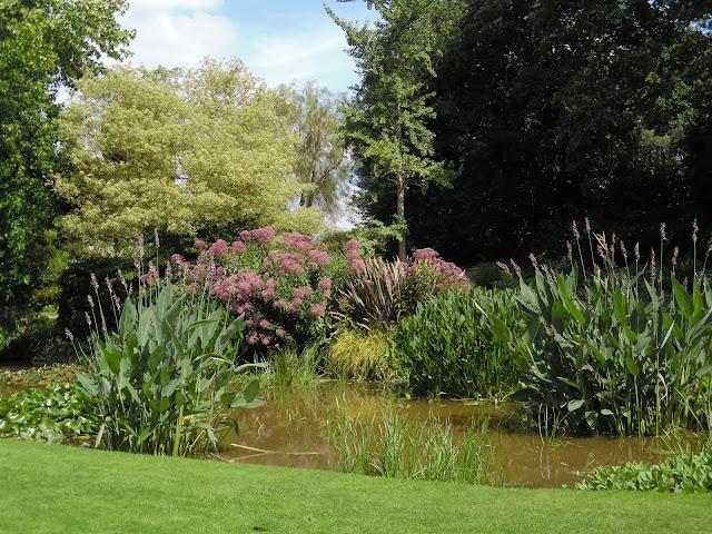 angielski ogród wodny