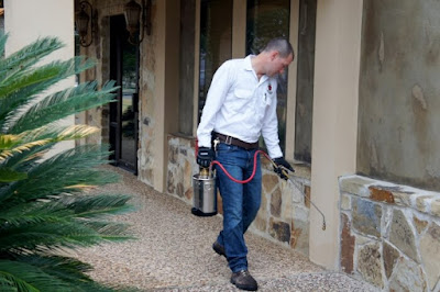 شركة مكافحة حشرات بالدمام مع خصم على رش مبيدات النمل الابيض والبق