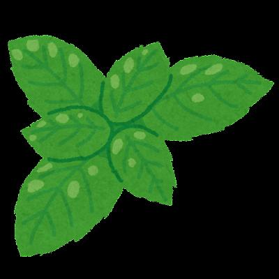 バジルの葉のイラスト
