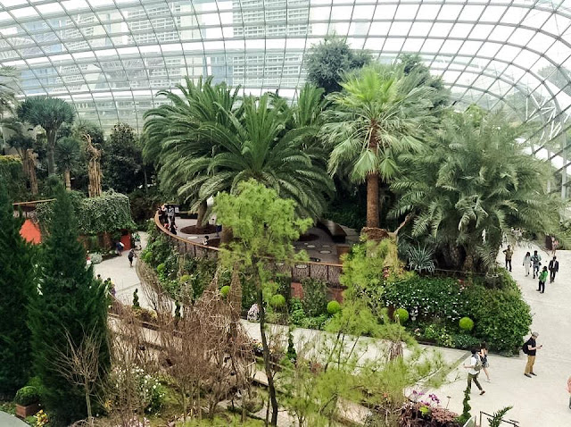 Flower Dome, Gardens by the Bay Singapore