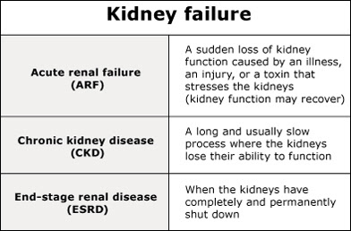 kidney failure homeopathy treatment in chennai