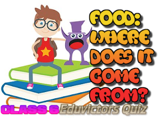 CBSE CLass 6 - Science - Food: Where Does It Come From? (Play Online Quiz) (#eduvictors)(#cbsenotes)