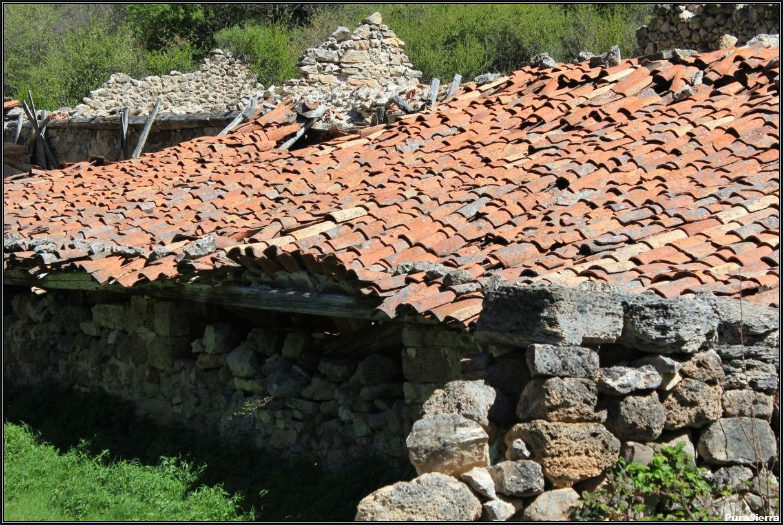 La Herrería (Peralejos De Las Truchas). Vista 6