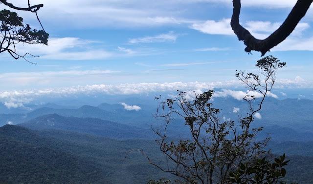 Mendaki Bukit Raya Dari Kota Palangka Raya