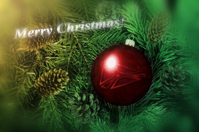 NIS Christmas banner