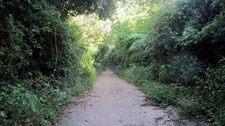 Chemin de Bayahibe à Dominicus