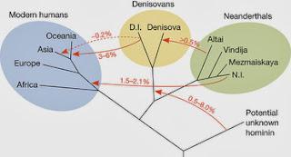 Flujo genético entre las poblaciones del Paleolítico