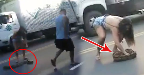 2uqSsxm Men Refused To Pick Up A Huge Snake In The Middle Of The Road But What This Woman Did Is UNEXPECTED!