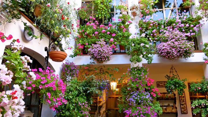 Marzua decorar un patio andaluz - Un patio andaluz ...