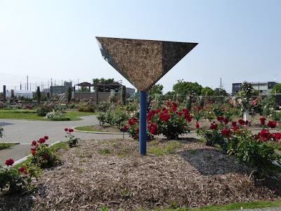 【大阪府茨木市】若園公園バラ園 鏡