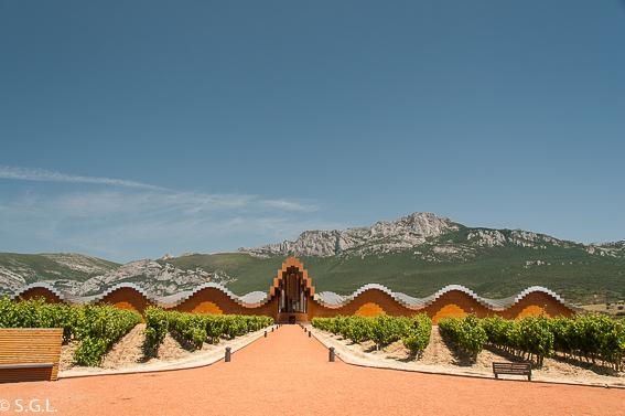 Bodega Ysios. Arquitectura y vino