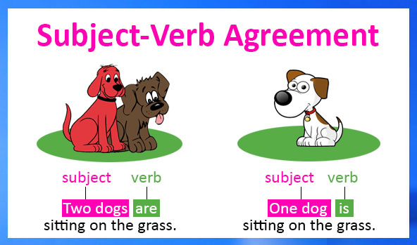 Subject verb agreement interview and job preparation subjects connected by and usually take a verb in the plural for example incorrect hari and ram is here correct hari and ram are here 2 if two platinumwayz
