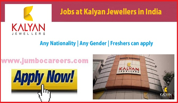 Latest freshers jobs in India, Kalayan jewellery jobs in India,