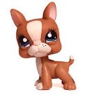 Littlest Pet Shop Multi Pack Boston Terrier (#1380) Pet