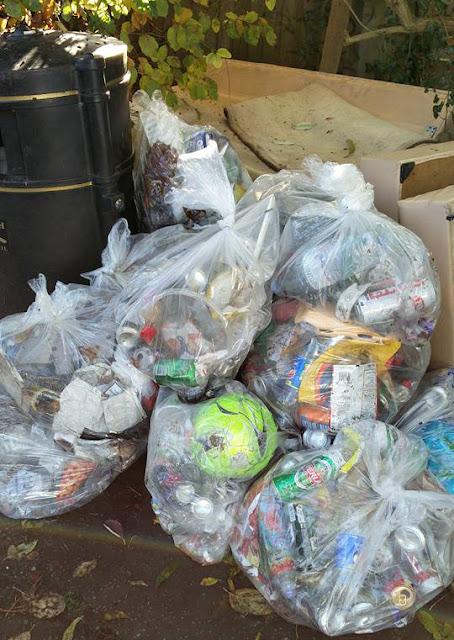 14 bags of litter
