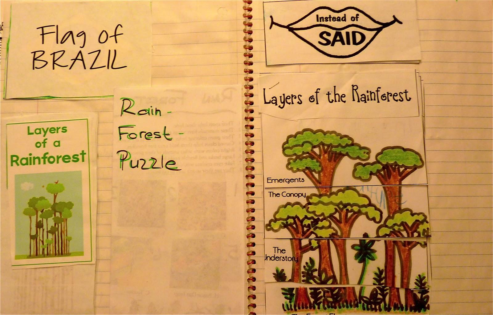 Homeschooling Reconstruction Rainforest Notebook