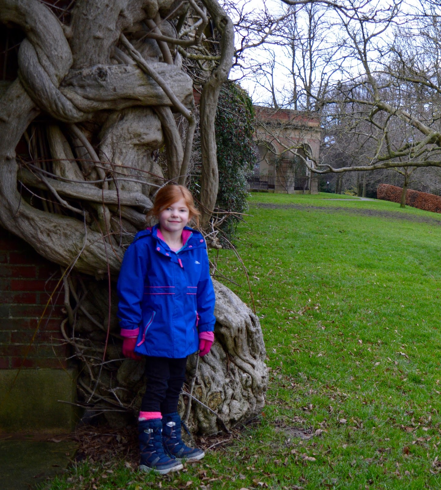 What to do in Valley Gardens, Harrogate | Play area, Pitch & Putt, events & more - twisted tree
