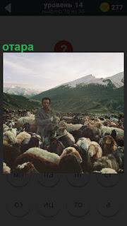 В горах по дороге двигается пастух вместе со своей отарой овец