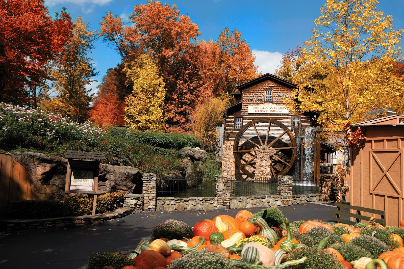 Dollywood's Great Pumpkin Luminights Provides Families with Memory-Making Opportunities  via  www.productreviewmom.com