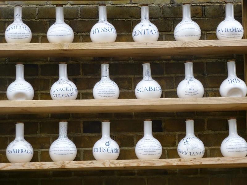 vasijas de boticario plantas medicinales