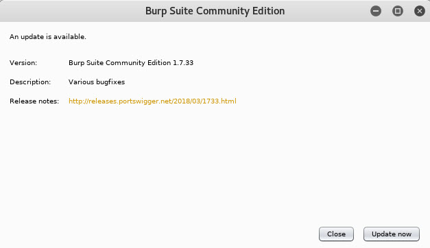 Burpsuite interface