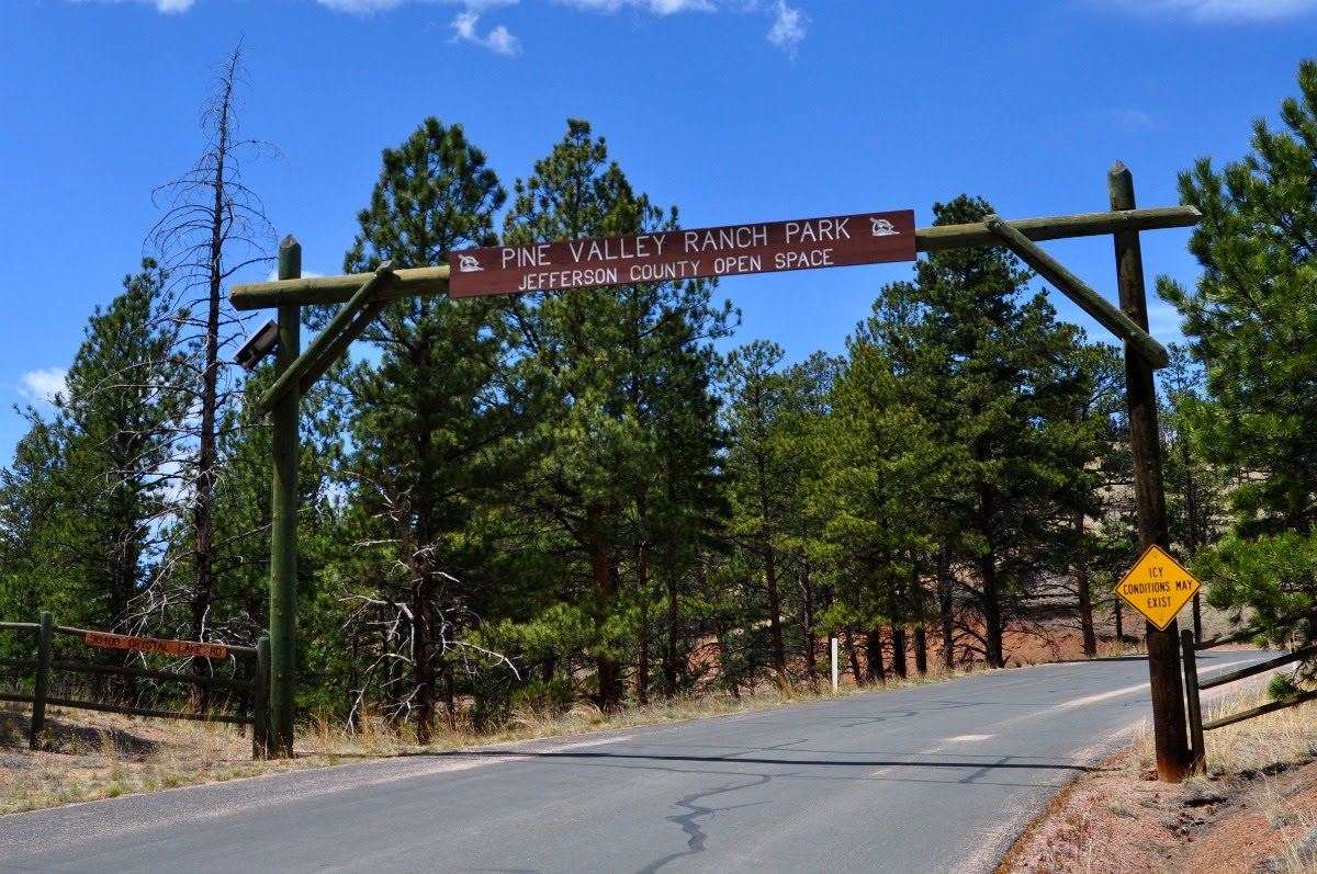 A Tree Falling: Pine Valley Ranch Park