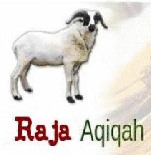 raja aqiqah depok