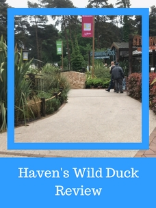 Havens wild duck review