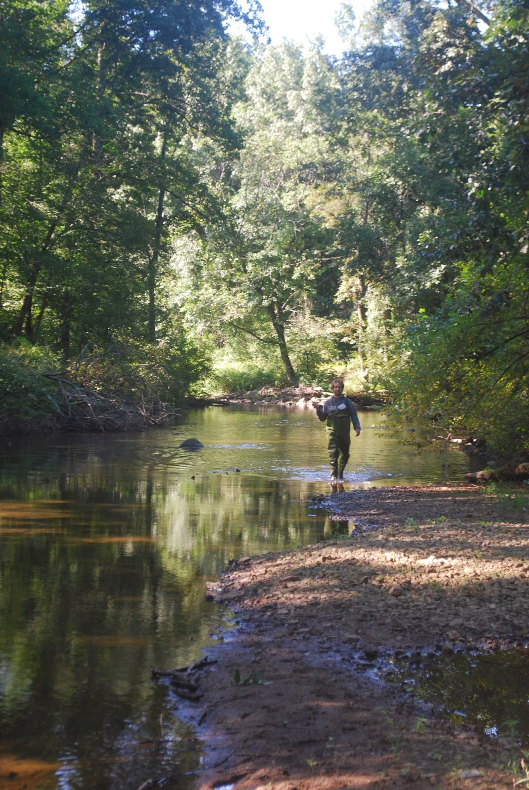 Litton S Fishing Lines Fly Fishing The Claremont South Branch Raritan River