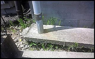 コンクリートの浮き上がり画像
