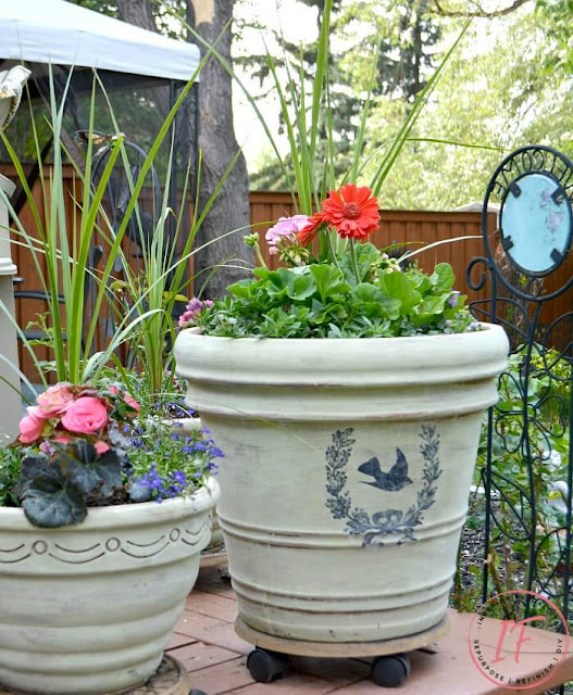 Terracotta Pots With French Country Style