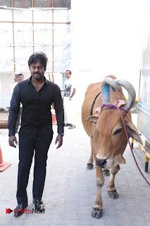 Attu Tamil Movie Audio Launch Stills  0012.jpg