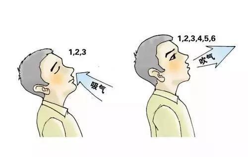 養肺先學會呼吸,初春這三招呼吸吐納法可幫你養肺防病(呼吸系統)