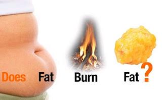 wsc-biolo-obat-peluntur-lemak