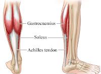 http://gerakancintafajar.blogspot.co.id/2017/12/sakit-achilles-tendinitis-pada-remaja.html