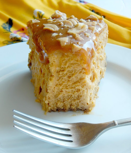 Caramel Cashew Pumpkin Cheesecake...mark this one #pumpkinspice lovers!  A perfect dessert for Thanksgiving.  Crispy gingerbread crust, a sweet creamy pumpking cheesecake filling, plus topped with drippy caramel and salty cashews. (sweetandsavoryfood.com)