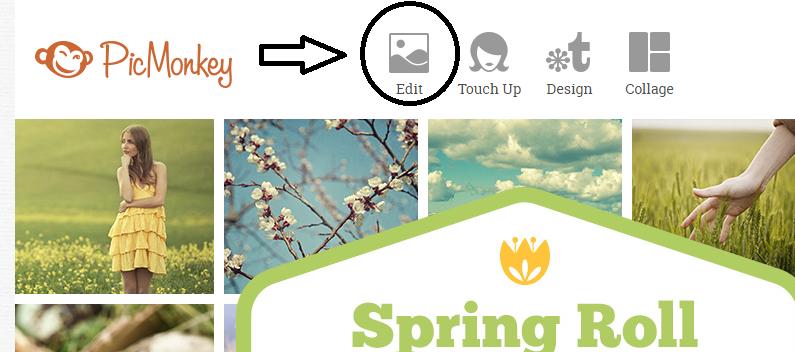 Essay editor online de imagens gratis