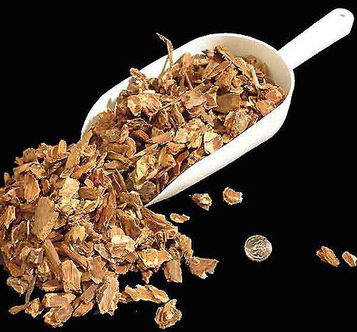 Vỏ thông vừa - Fir bark medium