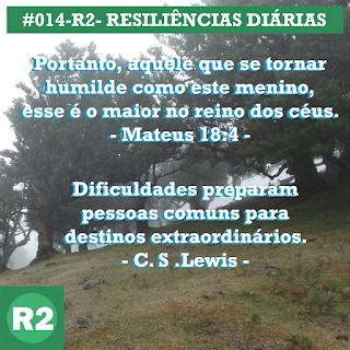 #014-R2- RESILIÊNCIA 2