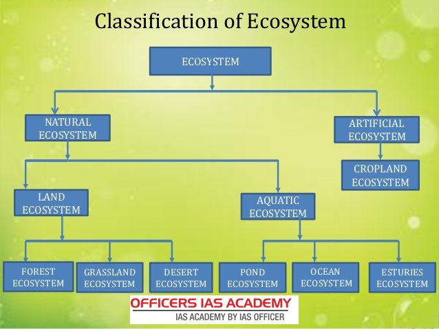 man made ecosystem The organization of ecosystems the basic level of ecological organization is with the individual, a single plant, insect or bird  communities are made up of.