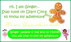 The Series of Ginger Adventure